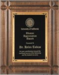 Walnut Recognition Plaque Groove Edge Achievement Awards
