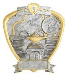 Signature Series Knowledge Shield Award  t All Trophy Awards