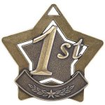 1st Place Star Gold  t Car/Automobile Trophy Awards