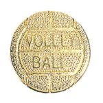 Volleyball Chenille Pin  t Chenille Lapel Pins