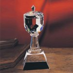 Trophy Cup Glass   Crystal Cup Trophies