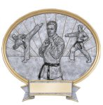 Legend Karate Oval Award  t Oval Resin Trophy Awards