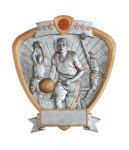 Signature Series Basketball Shield Awards  t Signature Shield Resin Trophy Awards