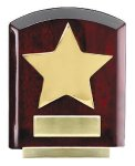 Star Dome Corporate Plaques Stand (t) Wood Metal Accent Awards